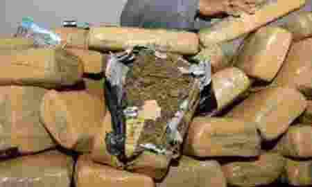 tim-gabungan-narkotika-gagalkan-penyeludupan-ganja-16-ton-asal-aceh_ps87fycui4_standarna